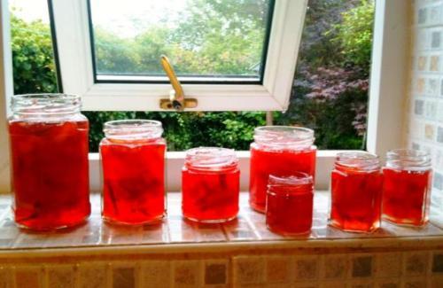 Zoe's homemade plum jam in jars