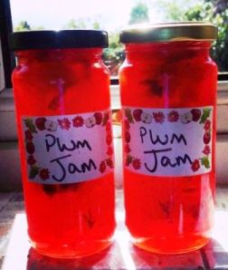 Zoe's homemade plum jam