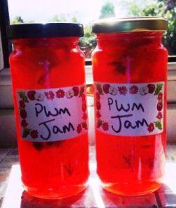 Zoe's homemade plum jam