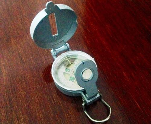 grey compass zoedawes
